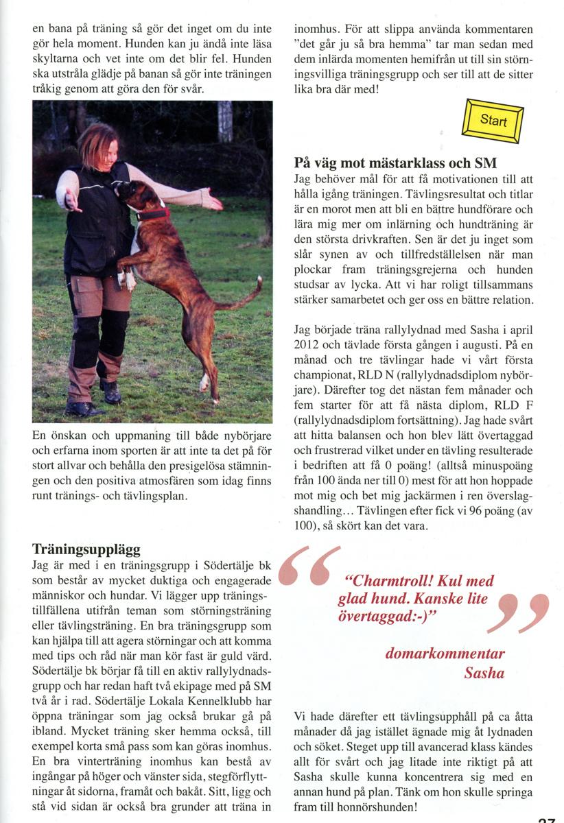 Rallylydnad Boxerbladet-2